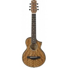 Акустическая гитара IBANEZ EWP14WB OPN