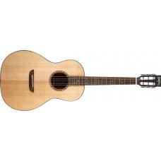 Акустическая гитара Washburn WP33SRS